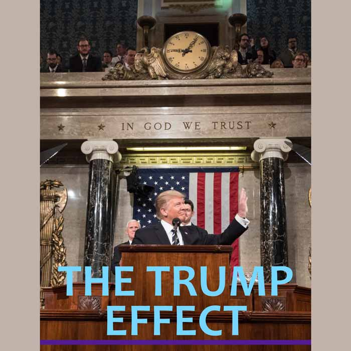 The Trump Effect financial newsletter Nov 2017